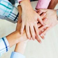 online_database_social_collaboration