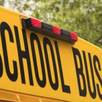 online_database_bus