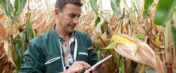 online_database_california_farmers