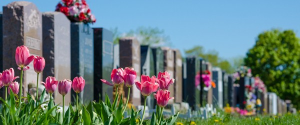 online_database_cemetery