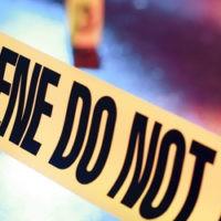online_database_crime_scene