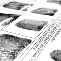 online_database_fingerprints