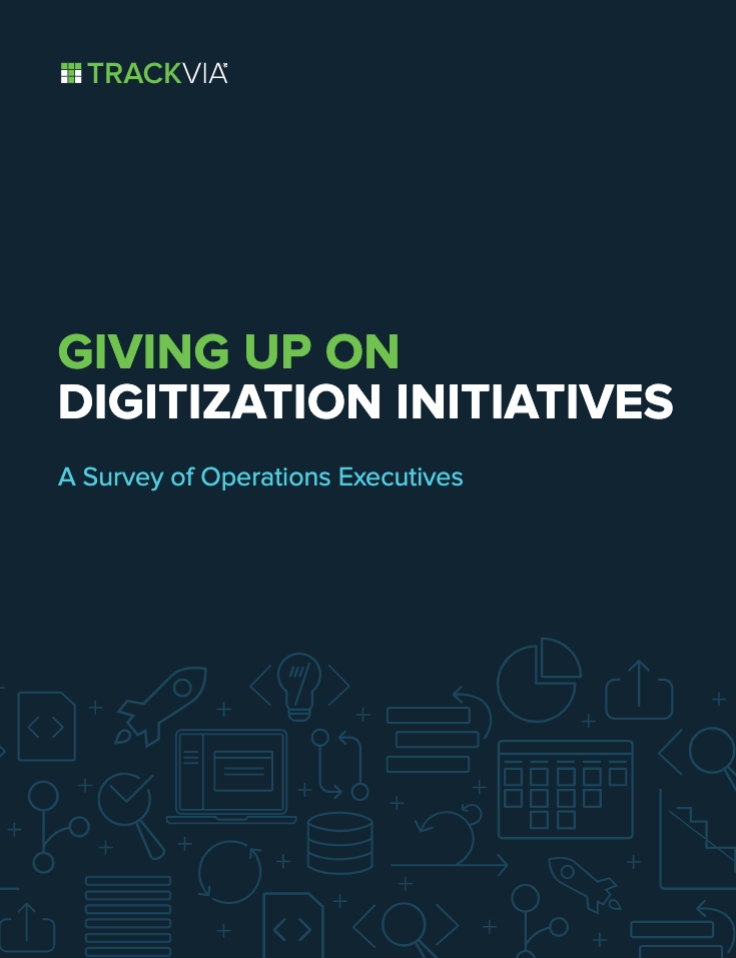 Giving Up on Digitization Initiatives